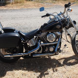 1984 Harley FXST  east bay